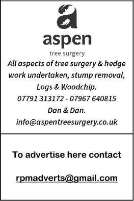 Aspen Advert