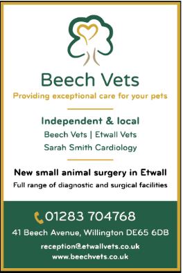 Beech Vets advert