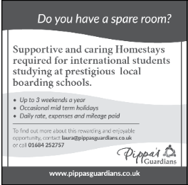 Pippas Guardians advert
