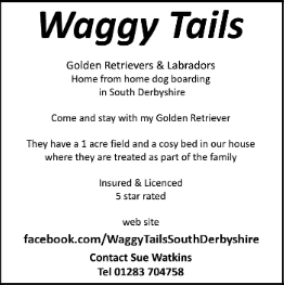 Waggy Tails advert